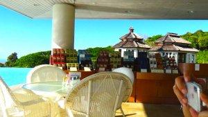 ハワイ島 コナ コーヒーベルト ドトール農園